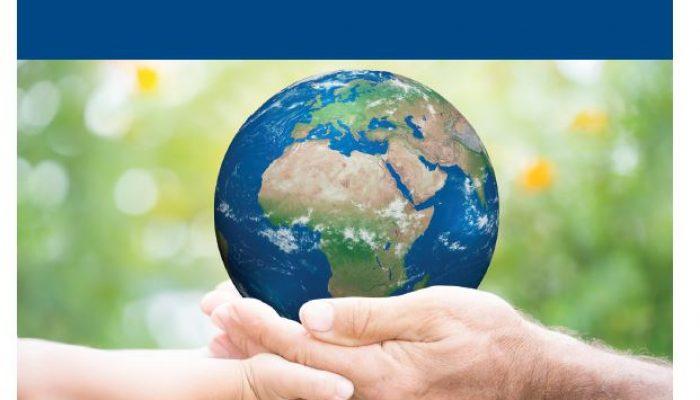 Nachhaltigkeitsstrategien erfolgreich entwickeln
